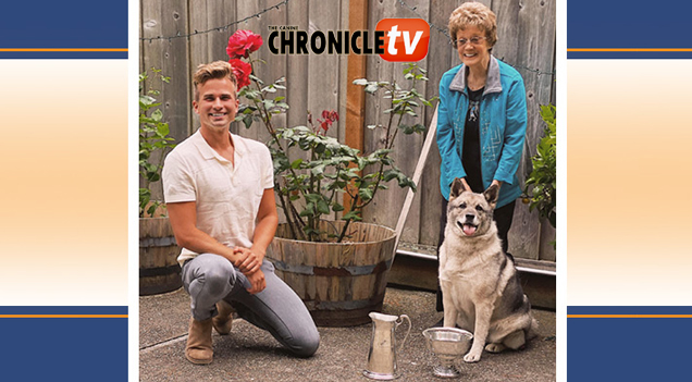 Westminster Best In Show 2021 2021 Westminster Best In Show Judge Pat Trotter – Canine Chronicle TV